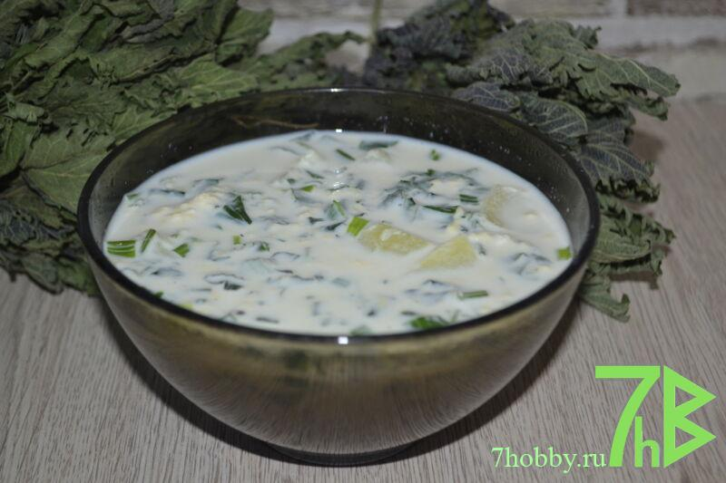 Суп из крапивы с молоком