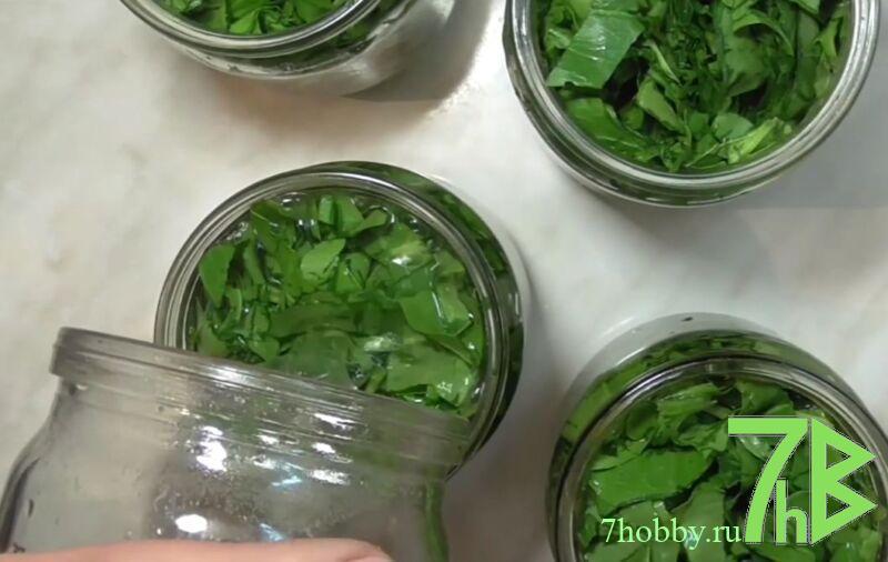 Рецепт щавеля с солью и холодной водой