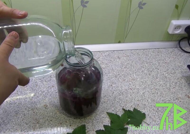 Черносмородиновая настойка на водке без сахара в 3 литровой банке