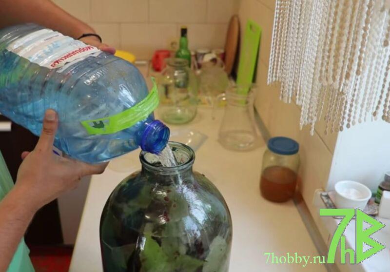 настойка из черной смородины на водке с листьями и сахаром без варки на зиму