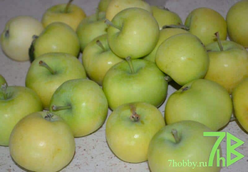 Джем из яблок белый налив на зиму